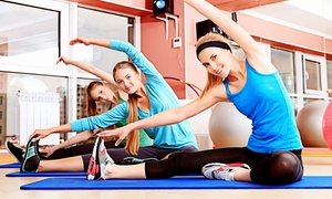 The Pilates Room Palos Verdes: Reformer Pilates and Gyrotonic Classes at The Pilates Room Palos Verdes (Up to 66% Off). Two Options Available.
