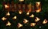 1x oder 2x Lichterkette mit Bienen-Motiv
