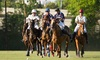 Houston Polo Club – Up to 45% Off Sunday Polo Match