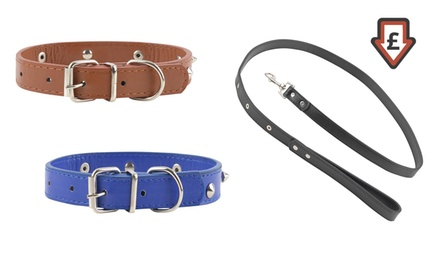 Dog Collar or Leash