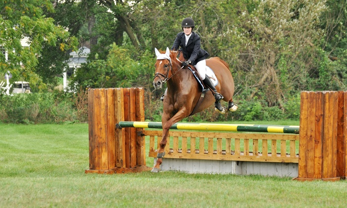 ThoroughQuest Acres - Wauconda: Three or Six 45- to 60-Minute Private Horseback-Riding Lessons at ThoroughQuest Acres (Up to 52% Off)