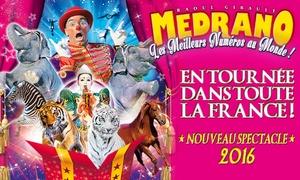 Cirque Médrano: Place en tribune d'honneur pour assister à l'une des représentations du cirque Medrano à 10 € à Perpignan
