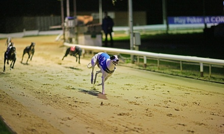 Greyhound Racing with Food, Drink and ReAdmission , Brighton and Hove Greyhound Stadium