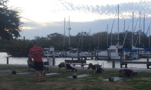 Tampa Bay Warrior Fitness: Four Weeks of Unlimited Boot-Camp Classes at Tampa Bay Warrior Fitness (70% Off)