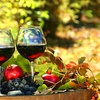 Up to 58% Off a Wine-Tasting Membership
