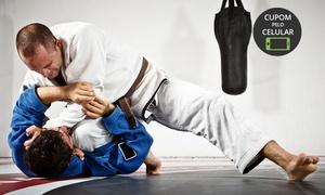 Best Fight e Fitness: Best Fight e Fitness – Setor Sul: 1, 6 ou 12 meses de jiu-jitsu, muay thay, crossbest ou tecido acrobático