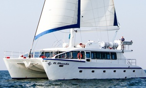 JPS Yacht & Charter Service: Four-Hour Catamaran Cruise with Barbecue and Drinks with JPS Yacht & Charter Service, El Mundo Dubai