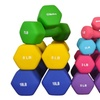 Bintiva Neoprene Hexagon-Shaped Dumbbells (Set of 2)