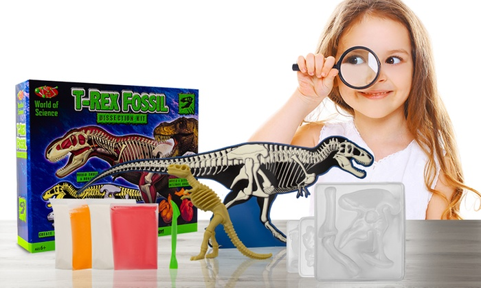 World of Science T-Rex Dinosaur Fossil Dissection Kit Children Educational Toy