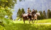 Up to 51% Off Trail Rides with River's Bend Ranch