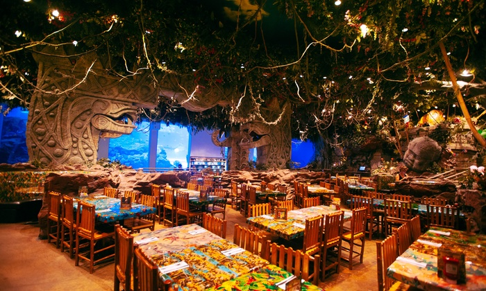 RAINFOREST CAFE GROUPON