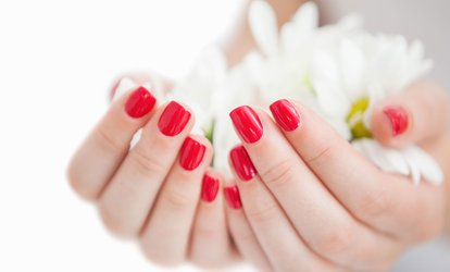 image for Mani-Pedi at Nails By Elaine Nikole (Up to 50% Off). Three Options Available