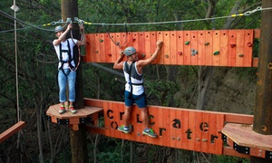 Aerial Challenge Course at Coral Crater Adventure Park  at Coral Crater Adventure Park, plus 6.0% Cash Back from Ebates.