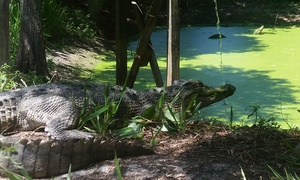 Up to 40% Off Admission to Smooth Waters Wildlife Park at Smooth Waters Wildlife Park, plus 6.0% Cash Back from Ebates.