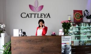 Cattleya: Zamrażanie tkanki tłuszczowej na wybranej partii ciała od 139,99 zł w instytucie Cattleya