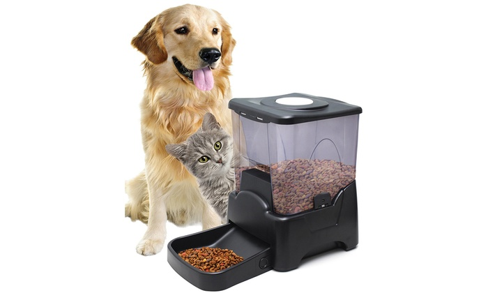 dog project gadgets diy hacked blog feeder tech dogfeeder automatic