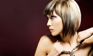 Nicky Wayne at Heritage Salon and Spa: Haircut and Style Packages with Optional Highlights from Nicky Wayne (Up to 55% Off). Three Options Available.