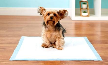 100 absorberende matten voor puppy's van het merk Pet Amore