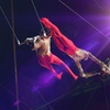 Royal Canadian Circus – Up to 48% Off