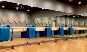 Up to 48% Off Barre Classes from Blue Barre and Dance Fitness