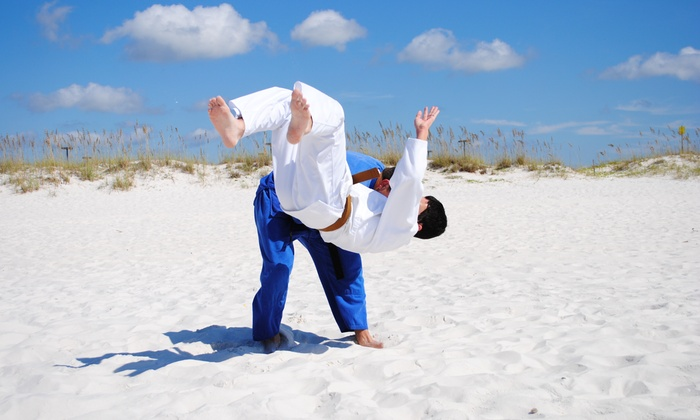 Gulf Shores Martial Arts - Gulf Shores: $20 for $80 Worth of Martial-Arts Lessons — Gulf Shores Martial Arts