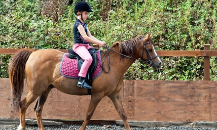 Pony Rides for Up to Two, Four, or Six Kids with Woodbury Farms (Up to 58% Off)