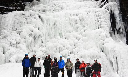 image for Full-Day or Half-Day Ice Hike Excursion from Valley To Summit (Up to 35% Off)