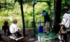 Up to 51% Off Sporting Clays Shooting