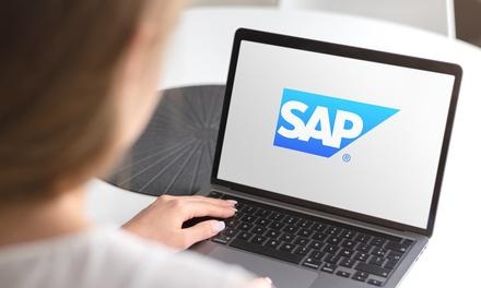 Corso base sull'utilizzo di SAP a 12,99€euro