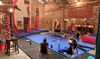 Up to 56% Off Aerial Fitness Classes at The Aerial House