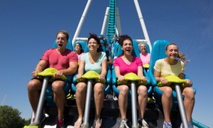 40% Off Single-Day Admission to Carowinds at Carowinds, plus 6.0% Cash Back from Ebates.