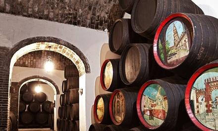Visita guiada a bodega con cata de vinos y aperitivo para 2, 4 o 6 personas desde 14,95 € en Bodegas Cruz Conde