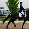 35% Off Horse Back Riding - Recreational