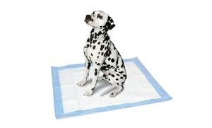 AKC Extra-Large Puppy Pads (50-Pack)