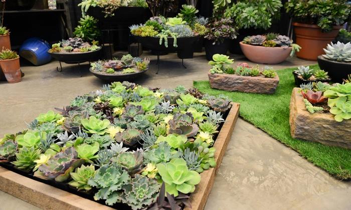 Oklahoma City Home + Garden Show in Oklahoma City, OK | Groupon