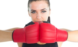 San Shou Martial Arts: Up to 82% Off Kickboxing Classes at San Shou Martial Arts
