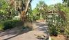 Discover Florida - Jungle Prada: Jungle Prada Site and Anderson/Narvaez Mound Tour for Two or Four from Discover Florida (Up to 60% Off)