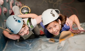 Extreme Ventures: Kids' Introductory Climbing Session for One or Two at Extreme Ventures (Up to 61% Off)