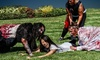 Zombie Outbreak at Hollywood Sports Park   - Hollywood sports: Zombie Outbreak for Two on Saturday, July 9 (Up to 55% Off). 18 Options Available.
