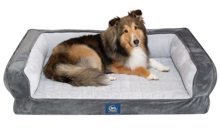 Serta Ortho Foam Couch Style Bed for