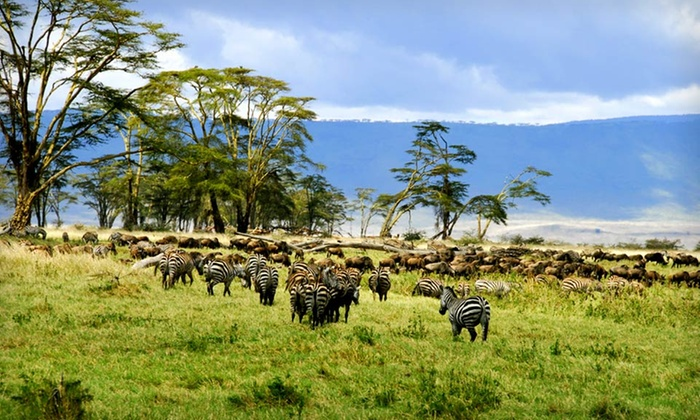 Eight-Day Tour of Tanzania with Airfare - Group IST New York: Eight-Day Tour of Tanzania with Airfare from ET African Journeys