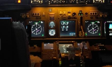 Simulador de vuelo para 1 o 2 personas desde 44,95 € en Cinetic Plus