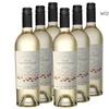 Wine Sisterhood Moscato Set (6-Piece)