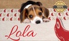 Manta para perros personalizable