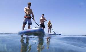 WA Surf: One ($9), Four Hour ($19) or All-Day ($29) Stand-Up Paddle Board Hire from WA Surf (Up to $50 Value)