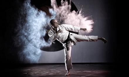 10 o 20 lezioni di karate Wado-Ryu per una persona alla Palestra Bushido (sconto fino a 78%)