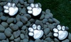 LED solaires forme patte chat