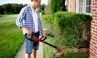 Je 2 oder 3 Stunden Hochdruckreinigung und Gartenarbeit von Steinreinigung Daniel (bis zu 70% sparen*)