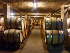 Domaine Debray: Visite et dégustation de 6 vins pendant 1h30 pour 2 avec mâchon bourguignon en option, dès 19,90 € au Domaine Debray