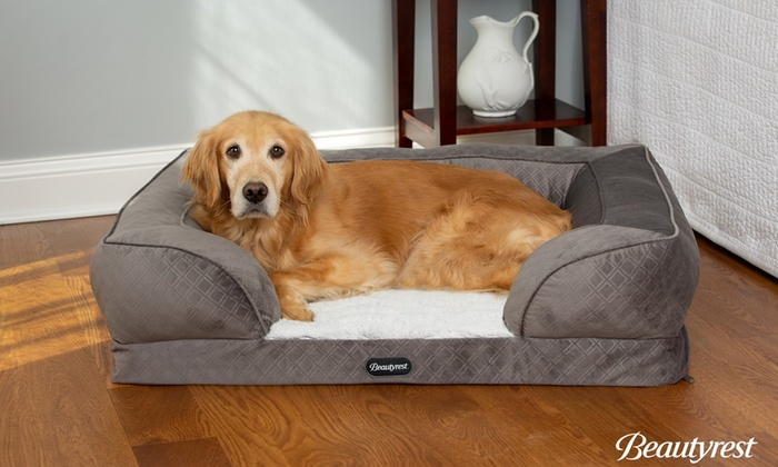 Beautyrest Supreme Comfort Couch
